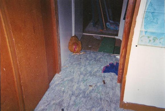room 004